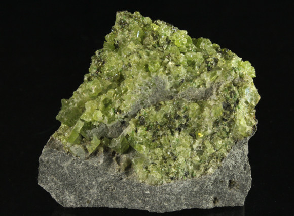 Peridot Grains in a Volcanic Bomb of basalt
