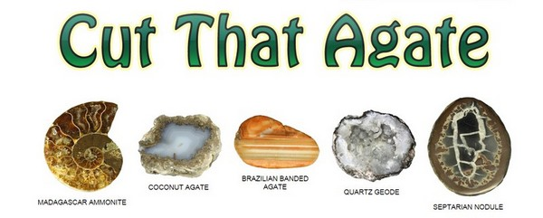 The five varieties of Cut That Agate