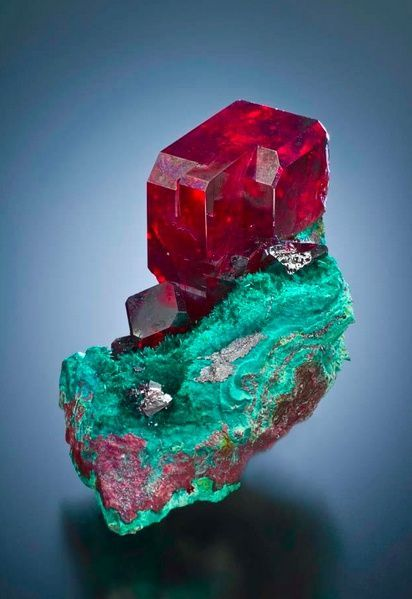 Cuprite (2.5 cm. crystal) on malachite from the Southwest Mine (specimen and photo © Richard Graham)