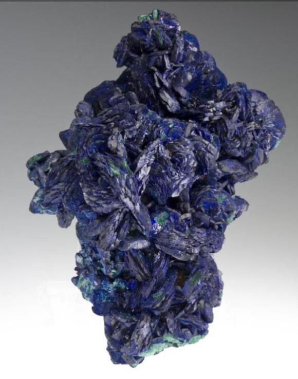 Azurite with Malachite: Czar Mine (14.5 cm across; specimen and photo © Joe Budd & irocks.com)