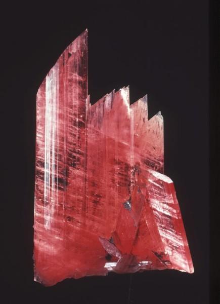 Rhodonite: 17 Level, Zinc Corporation Mine, Broken Hill- 4.7 cm. high, (photo by Carl Bento, © Australian National Museum)