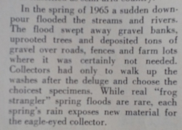 quote talking about how when it rained in 1967, the wash turned over new material.