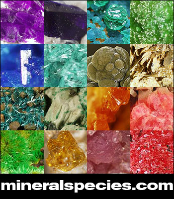 Mineral Species