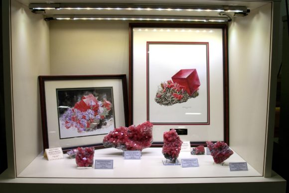 Fredrick Wilda East Coast Mineral Display Case of Rhodochrosite