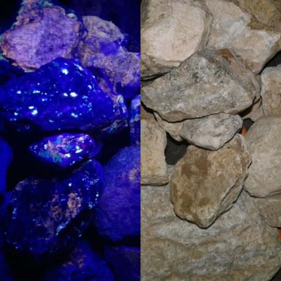 Princess Pat Mine Short Wave UV Rocks